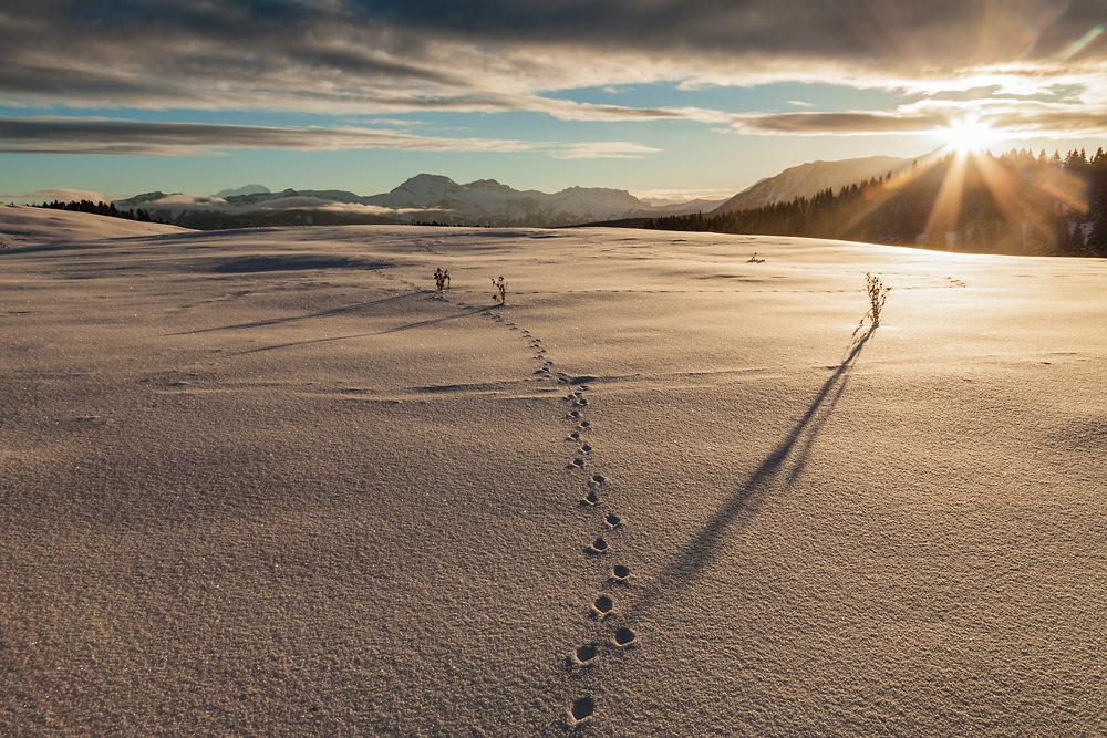 Lever de soleil dans la neige. Stage photo alpes savoie